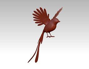 parrot beautiful Bird 3D print model