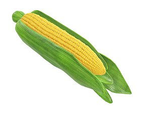3D model Corn with leaves