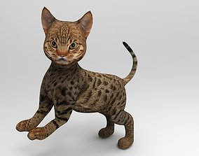 Cute Cat Rigged 3D model realtime