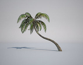 animated 3d model palm