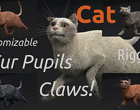 Customizable Rigged Cat 3D model PBR