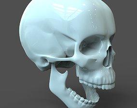 CAD compatible Human Skull model M3P1D1V1Skull