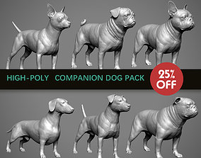 Companion Dog Pack High-Poly Collection 3D model