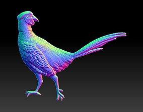 Pheasant 3D model