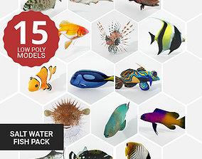 3D model 15 Saltwater Fish Pack