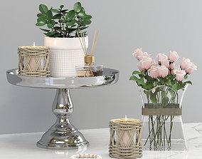 Decorative set with flowers 3D model interior
