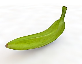 3D model Plantain green banana