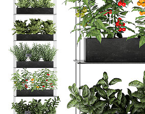 3D model Vertical garden for the kitchen 68