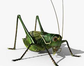 3D Grasshopper