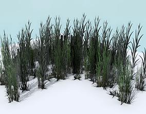 Tall Grass Pack 3D asset