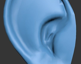Ear ready to attach to head model 3D asset