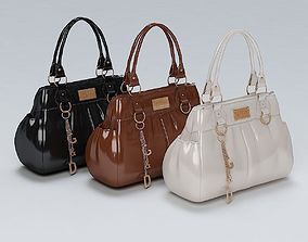 3D Ladies Hand Bag 02