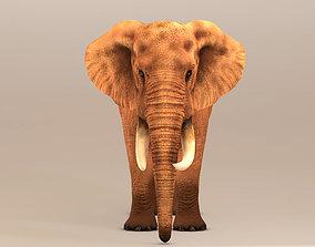 mammal Elephant 3D model