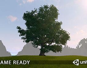 Old Oak for unity 3D asset