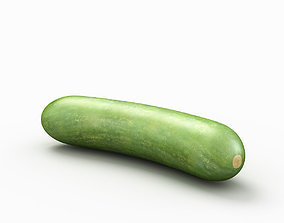 Cucumber vegetable 3D