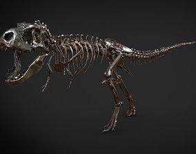 3D print model Tyrannosaurus Skeleton
