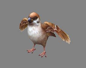 Cartoon sparrow 3D model