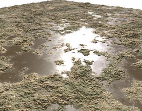Dirty Ground 2 PBR 3D model
