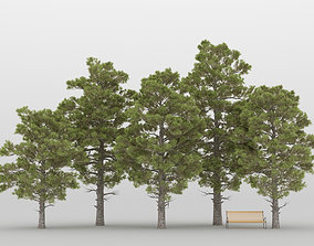 Pine Tree Pack 01 3D model