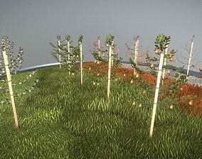 Small Pear Trees - Four Seasons 3D asset