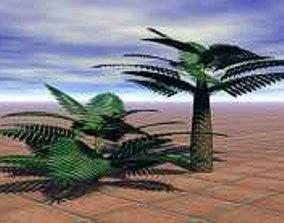 tree fern 3D model