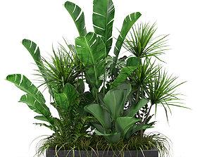 3D Plants collection 370