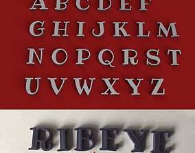 RIBEYE uppercase and lowercase 3D Letters STL FILE