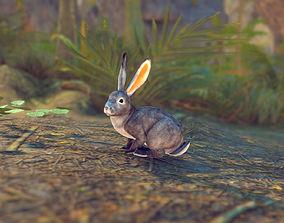 Realistic Rabbit 3D asset