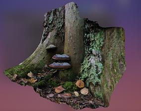 Mushroom On A Tree Stump 3D model stump
