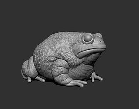 3D Anaxyrus for Printing