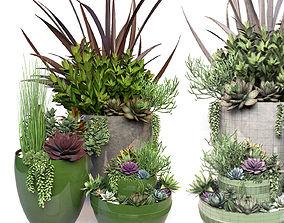 3D model Plants 3