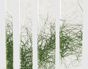 3D Ivy for rectangular columns 4 models
