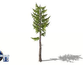 lowpoly pond pine tree type 3d model VR / AR ready