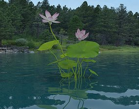 Nelumbo Lotus 3D