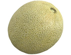 Photorealistic 3D Scanned Melon realtime