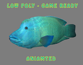 3D model Low poly Napoleon Fish Animated - Game Ready