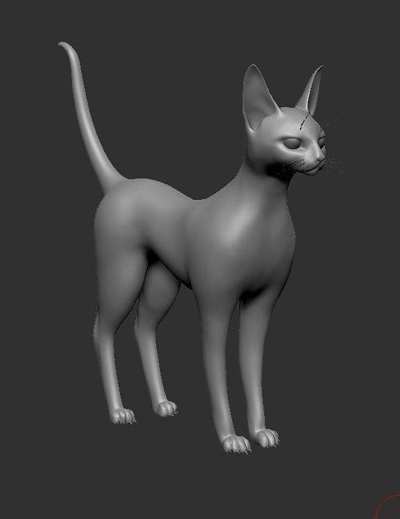 Cat Sfinx Free Model