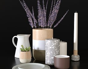 Decorative set with plates and plants 3D