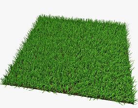 3D model Grass 03