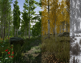 Scanned Poplar and Aspen Forest with Seasons 3D model 3