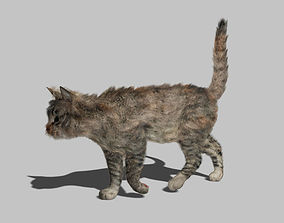3D asset Cat - Rigged Animated
