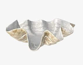 3D model Clam shell bowl