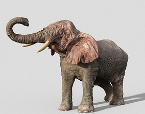 Elephant creature 3D rigged