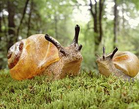 3D asset rigged Snails Scene