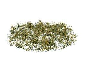 Circular Patch Of Grass 3D model