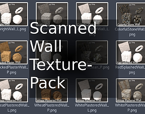 Scanned Walls Texture-Pack 3D model