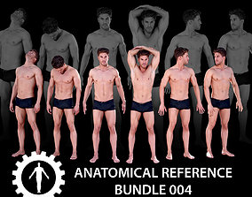 3D model Anatomical Reference Bundle 004