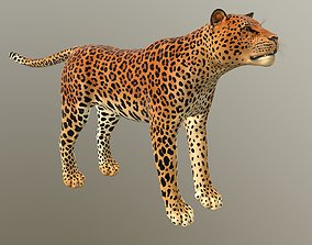 VR / AR ready Leopard - lowpoly 3d model