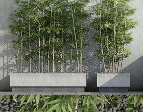 3D model Bamboo 03