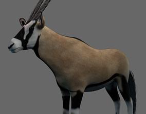 African Oryx 3D model